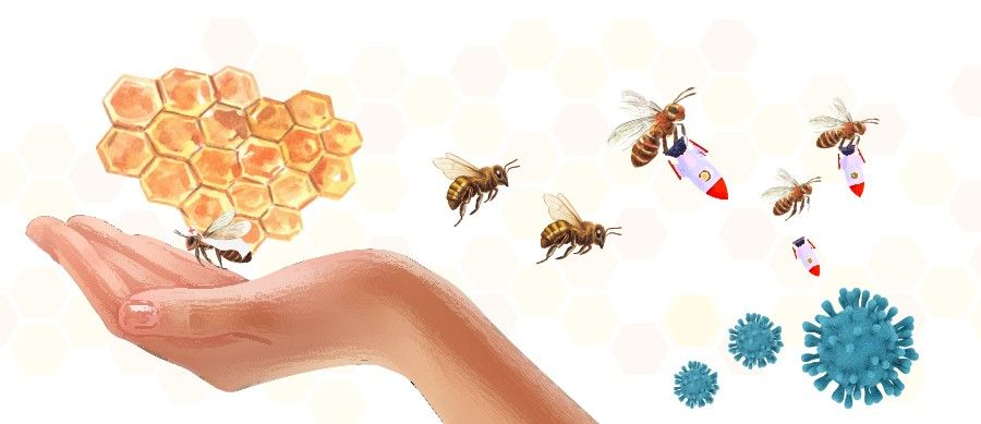 Balqees Honey Therapy image 2